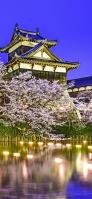 姫路城と桜 Redmi Note 9T Androidスマホ壁紙・待ち受け