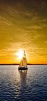 海を走る一隻のヨット iPhone 11 Pro スマホ壁紙・待ち受け