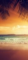 夕焼け 綺麗な波 椰子の木 iPhone 12 スマホ壁紙・待ち受け