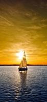 青い海 航海するヨット 金色 iPhone 12 Pro スマホ壁紙・待ち受け