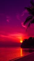 グアムのピンク色に染まる海 iPhone SE (第2世代) スマホ壁紙・待ち受け