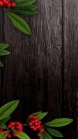 焦げ茶色の木の板 赤い実 緑の草 iPhone SE (第2世代) スマホ壁紙・待ち受け