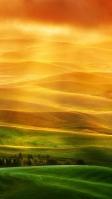 緑から黄色に変わる丘陵地 iPhone SE (第2世代) スマホ壁紙・待ち受け