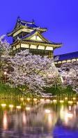 湖と姫路城と夜桜 iPhone SE (第2世代) スマホ壁紙・待ち受け