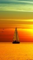 夕暮れ時の海を航行するヨットと渡り鳥 iPhone SE (第2世代) スマホ壁紙・待ち受け