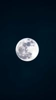 兎 満月 夜 iPhone SE (第2世代) スマホ壁紙・待ち受け