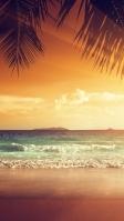 椰子の木越しに見る海 iPhone SE (第2世代) スマホ壁紙・待ち受け