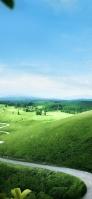 晴れた日の丘陵 iPhone 11 スマホ壁紙・待ち受け
