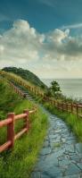 海沿いの赤い柵がある小道 iPhone 11 スマホ壁紙・待ち受け