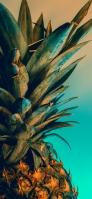 綺麗なパイナップル 緑の背景 接写 Redmi 9T Android スマホ壁紙・待ち受け