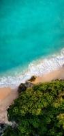 俯瞰視点 綺麗な緑色の海 浜辺 林 AQUOS sense5G 壁紙・待ち受け