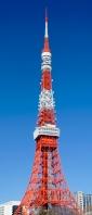 東京タワー Xperia 10 III Androidスマホ壁紙・待ち受け