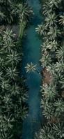 俯瞰視点のジャングル 森と川 iPhone 12 mini スマホ壁紙・待ち受け