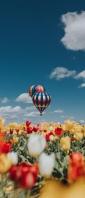 チューリップ畑とカラフルな気球と青空 Xperia 10 III Androidスマホ壁紙・待ち受け