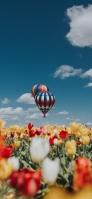 黄色・赤色・白色のチューリップ カラフルな気球 iPhone 12 mini スマホ壁紙・待ち受け