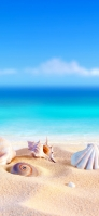 砂浜の綺麗な貝殻と青空 iPhone 12 Pro スマホ壁紙・待ち受け