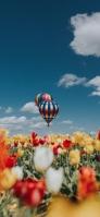 トルコ カッパドキア 気球 チューリップ iPhone 12 スマホ壁紙・待ち受け