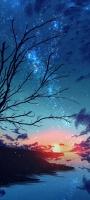 銀河と川と枯れ木 Galaxy A32 5G 壁紙・待ち受け
