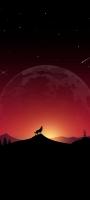 遠吠えをする狼 惑星 銀河 流れ星 Redmi Note 9S Androidスマホ壁紙・待ち受け