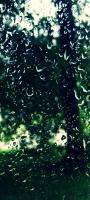 緑色の自然が透けて見える水滴がついたガラス OPPO Reno5 A Androidスマホ壁紙・待ち受け